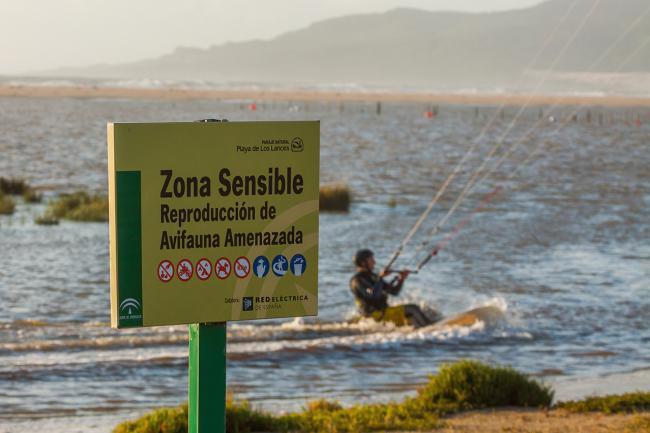 Un kitesurfista en la laguna de Los Lances durante una pleamar, a pocos metros de uno de los muchos e ignorados letreros que prohíben tal actividad (foto: Yeray Seminario / Asociación 14KM).