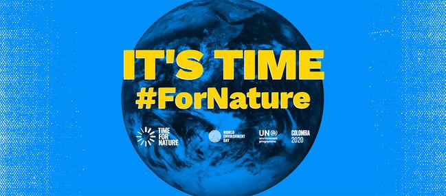 TRIBUNA: La AEEA ante el Día Mundial del Medio Ambiente