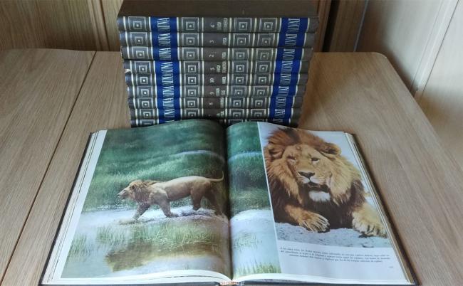 "Tomos de la enciclopedia ""Fauna"", uno de ellos abierto, sobre una mesa (foto: Alfonso V. Carrascosa)."