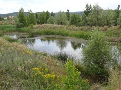 Una oportunidad para las graveras de Guma, en Burgos