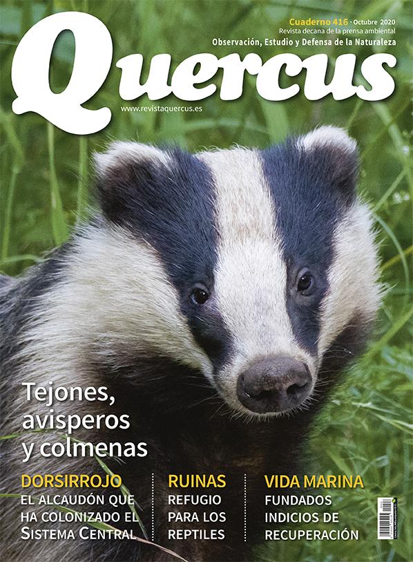 Sumario Quercus nº 416 / Octubre 2020