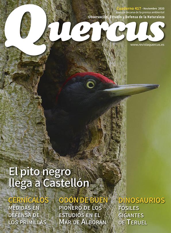 Sumario Quercus nº 417 / Noviembre 2020