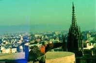 La reintroducción del halcón peregrino en la ciudad de Barcelona