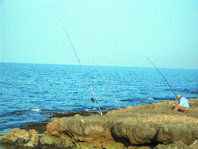 La pesca recreativa en el litoral de Mallorca