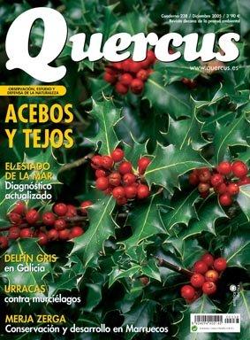Portada Quercus 238