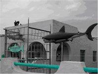 Establecimiento especializado en la contratación de buceo en jaula, en la localidad de Gansbaai, considerada como la capital mundial en el turismo de observación de tiburones blancos.