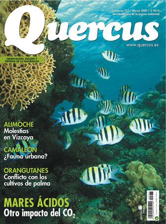 Quercus 277 / Marzo 2009 + ¡ GRATIS ! Libro Turismo Ornitológico en Extremadura