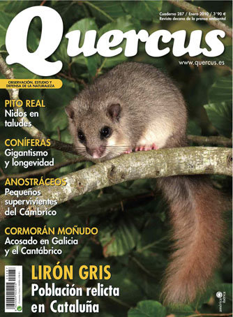 Portada Quercus nº 287 / Enero 2010