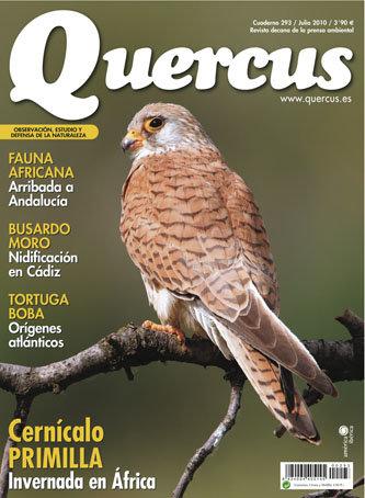 Portada Quercus nº 293 / Julio 2010