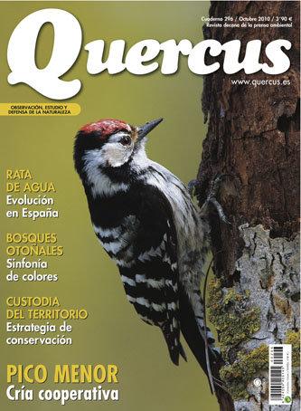 Portada Quercus nº 296 / Octubre 2010