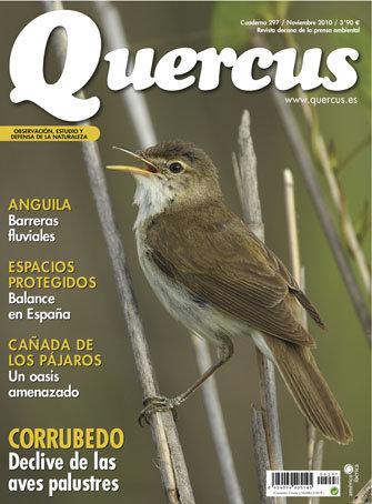 Portada Quercus nº 297/ Noviembre 2010