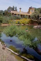 La Cañada de los Pájaros: problemas que amenazan a las pequeñas reservas