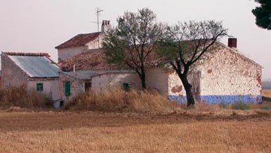 Las aves nocturnas en el paisaje agroforestal de Campo de Montiel