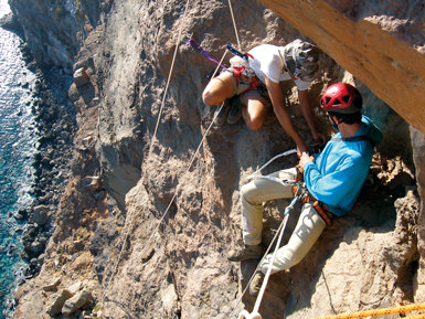 Algunas veces, para confirmar la existencia de madrigueras ocupadas por petreles de Bulwer, fue necesario recurrir a técnicas de escalada.