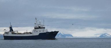 Arrastrero dedicado a la pesca de gambas en aguas del Ártico europeo (foto: Sergio Rejado).