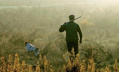 """Una escena de la llamada """"caza a rabo"""", modalidad poco agresiva para la fauna. La caza ha dejado de ser una necesidad vital para convertirse en mera afición, casi un lujo (foto: Pedro Jorge Henriques / Shutterstock)."""